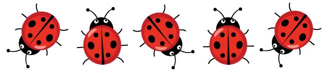 Five Ladybugs