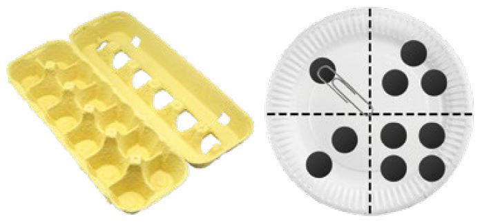 Egg Carton and Paper Plate