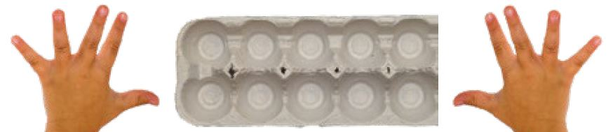 Egg carton and 2 hands