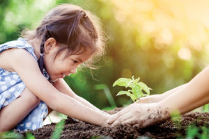 Child helping to plant