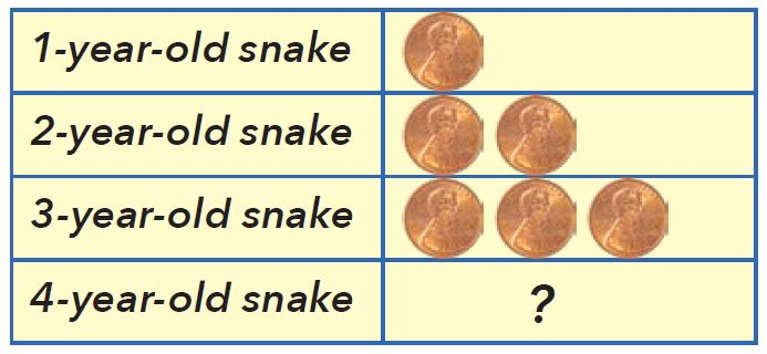 Using pennies to show how snakes grow